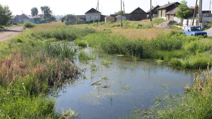 Состояние реки Исток – катастрофическое