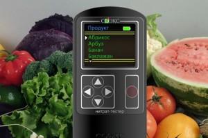 «Народный контроль» Челябинска проверил содержание нитратов в сезонных фруктах и овощах