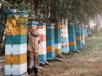 Каслинский пчеловод приобрел опыт с годами совсем не сладкой жизни