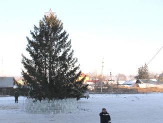 Главная ёлка Каслинского района заняла своё почётное место