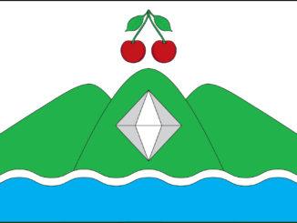 Вишневогорск флаг