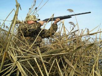 В Челябинской области ограничили срок весенней охоты