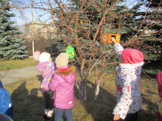 Синичкин день в каслинском детском саду «Орлёнок»