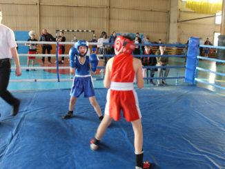 Даже у начинающего боксера нет страха перед более опытным соперником
