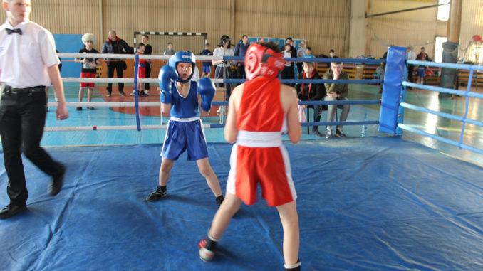 Каслинские боксеры клуба «Юность» держат удар (фото)