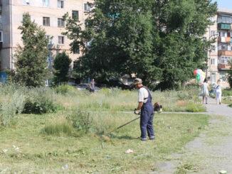 В центре города скашивают траву