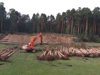 На стройплощадке будущего стадиона выкорчевали около сотни сосен и сняли часть скалистого грунта